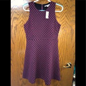 Ann Taylor Loft NWT Sz 12P Dress